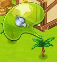 星の島のにゃんこ バナナの木に水やり