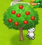 星の島のにゃんこ リンゴの木
