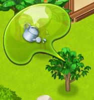 星の島のにゃんこ カカオの木に水やり